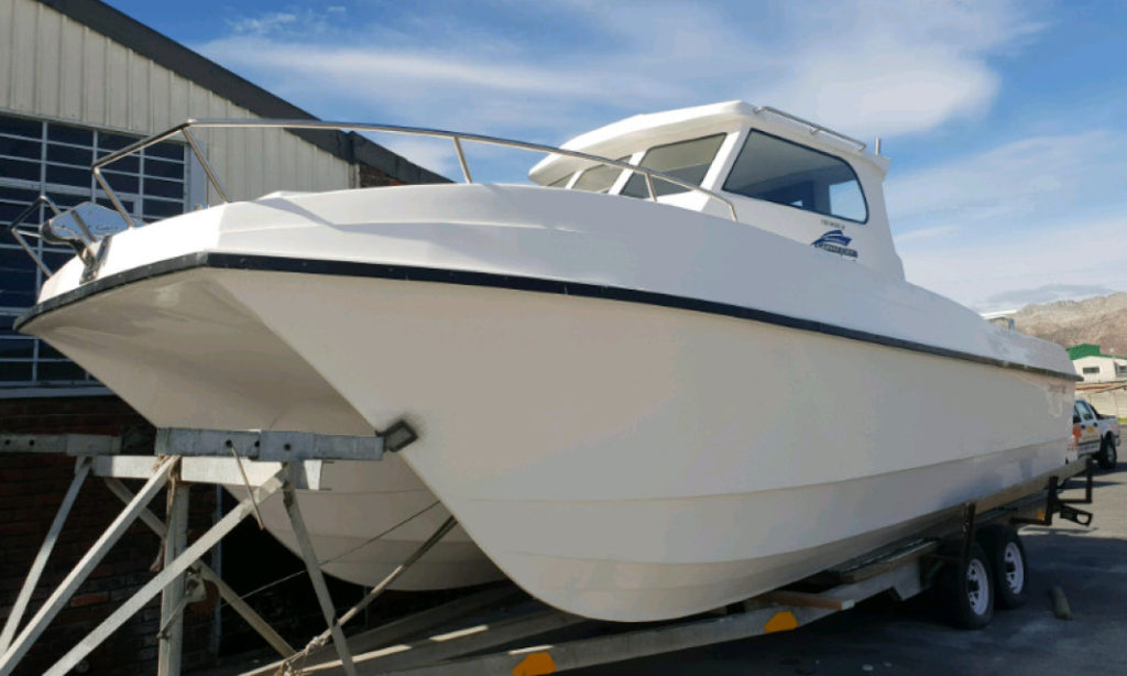 carry, cat, carrycat, 900, boat, new, ski, for sale
