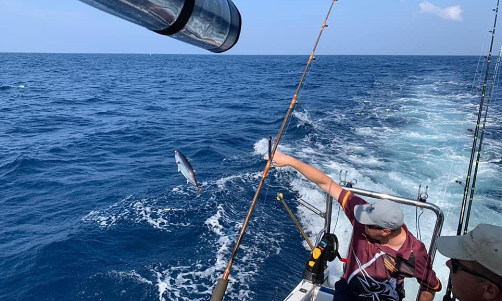 THE 12 SPECIES NOMINATED, ALL THE DATES AND WHAT TO EXPECT FROM THIS YEAR'S 12 X 12 SPECIES FISHING COMPETITION IN ST LUCIA