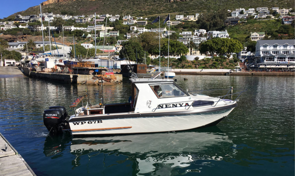 Boats at 50th Annual Rumbly Bay Tuna Invitational Big Game Fishing Competition Cape Town, Simon's Town Miller's Point by Nauti-Tech Suzuki