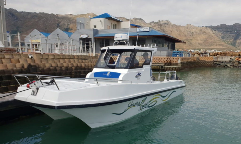 carrycat, 760, carry, cat, fishing, boat, for sale, 7 metre, custom, built, new, cabin, centre, console, features, optional, extras, buy, purchase
