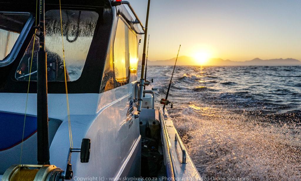 piromero, new, boat, carrycat, 760, carry, cat, tuna, game, fish, 7 metre, custom, built, fishing, robin vermaak