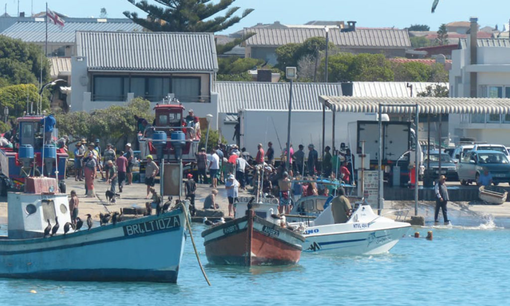 two, oceans, marlin, tournament, competition, struisbaai, agulhas, L'Agulhas, billfish, black, striped, suidpunt, deep, sea, angling, club, diepsee, hengelklub, dates, 2020, info, registration, rules, species, contact, entry